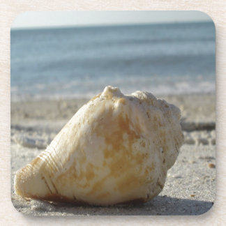 Beach A Clear Water Shell Drink Coaster