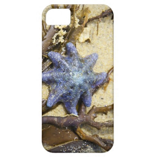 Beach Abstract Case-Mate Case iPhone 5 Cover
