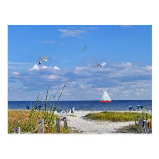Beach and Ocean View Postcard