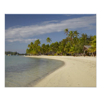 Beach and palm trees, Plantation Island Resort 2 Poster