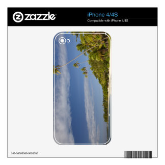 Beach and palm trees, Plantation Island Resort iPhone 4S Decal