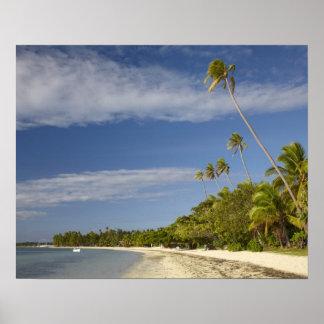 Beach and palm trees, Plantation Island Resort Poster