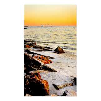 Beach and Sailboats on Tampa Bay at Sunset Double-Sided Standard Business Cards (Pack Of 100)
