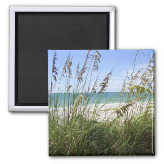 Beach and Sea Grass 2 Inch Square Magnet
