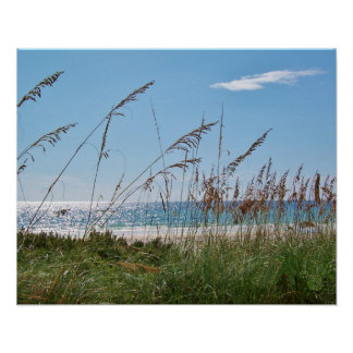 Beach and Sea Oats Poster