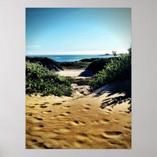 Beach and Sea Point Lobos, CA Poster