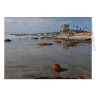Beach and seaweed card