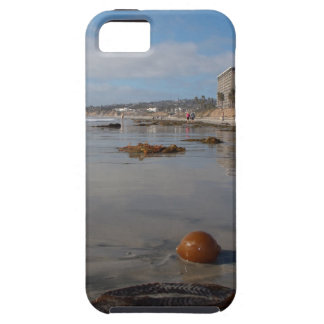 Beach and seaweed iPhone 5 covers
