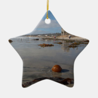 Beach and seaweed christmas ornament