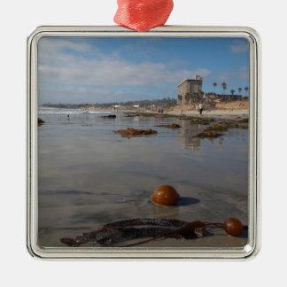 Beach and seaweed ornaments