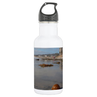 Beach and seaweed 18oz water bottle