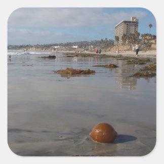 Beach and seaweed sticker