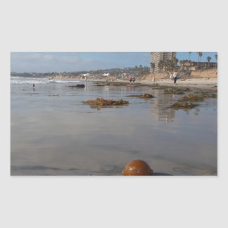 Beach and seaweed stickers