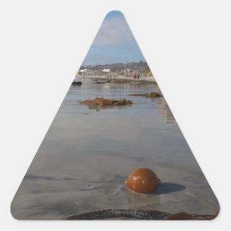 Beach and seaweed triangle sticker