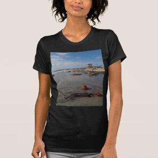 Beach and seaweed t shirts