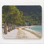 Beach at Cane Garden Bay, Island of Tortola Mouse Pad
