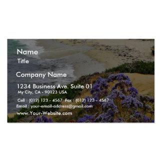 Beach At La Jolla Cove Business Cards