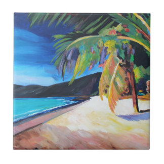 Beach at Magen's Bay St Thomas US Virgin Islands Ceramic Tile