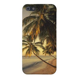 Beach at sunset, Trinidad iPhone 5/5S Case