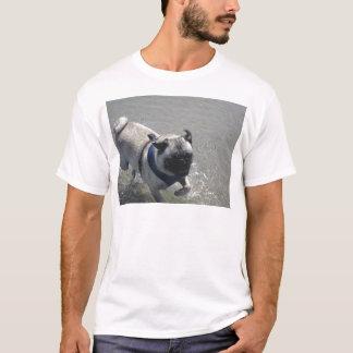 beach aug 27 (9) T-Shirt
