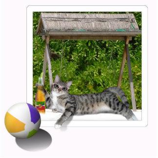Beach Ball  Kitty Statuette