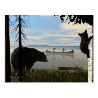 Beach Bears Postcard