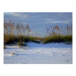 Beach Beauty, S Cyr Poster