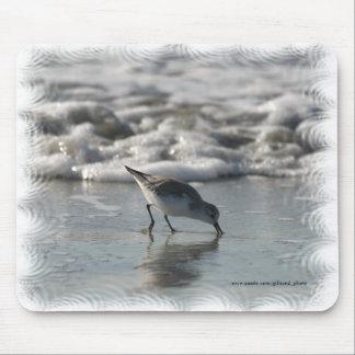 Beach Bird Mousepad