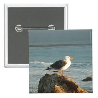 Beach Bird: Seagull Button