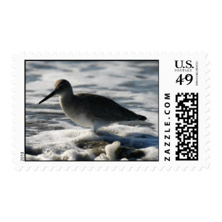 Beach Birds 3 Postage