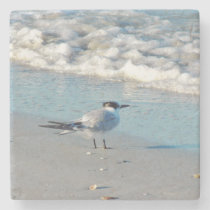 Beach Birds Stone Coaster