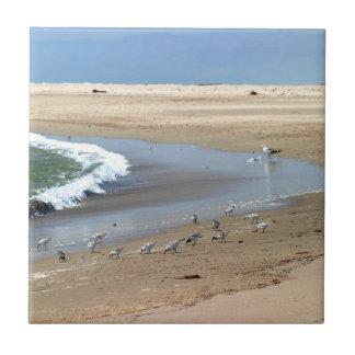 Beach Birds Tile