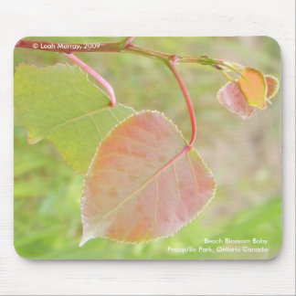 Beach Blossom Baby Mouse Pad
