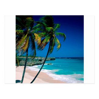 Beach Bottom Bay Barbados Postcard