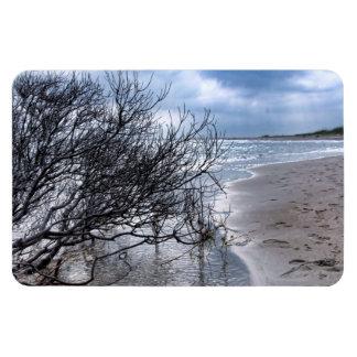 Beach Brach Magnets