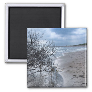 Beach Branch 2 Inch Square Magnet