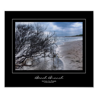 Beach Branch Black Border Poster
