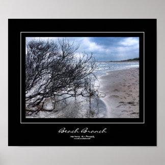 Beach Branch Black Border Poster