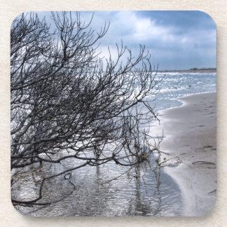 Beach Branch Coaster