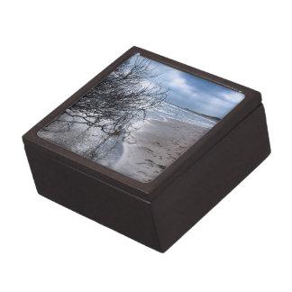 Beach Branch Gift Box