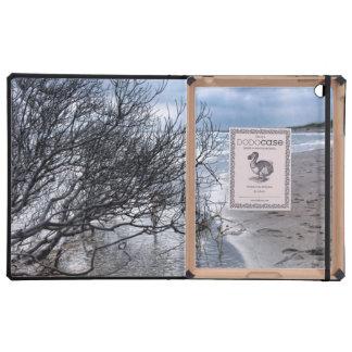 Beach Branch iPad Covers