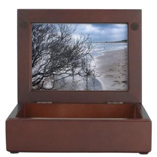 Beach Branch Memory Box