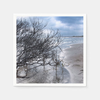 Beach Branch Paper Napkins