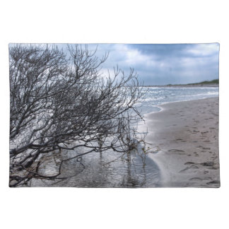 Beach Branch Placemat