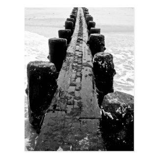 Beach Breakwater - Center Postcard