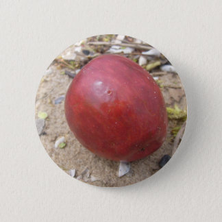 (Beach Bum Apple ) Pinback Button