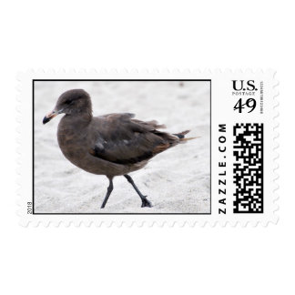 beach bum postage stamps