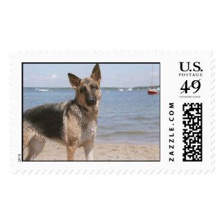Beach Bum Stamp