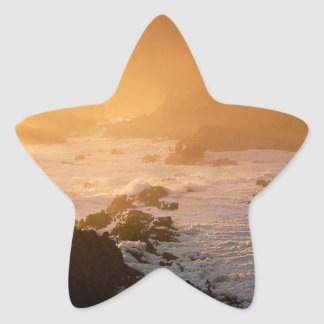 Beach Cape Good Hope South Africa Star Sticker