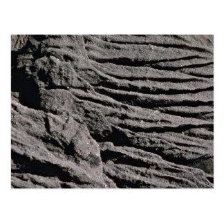 Beach cliff erosion textures, San Clemente, U.S.A. Postcard